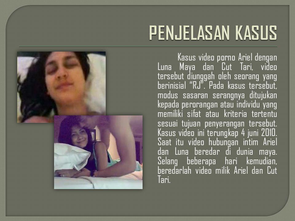 Menurut Kabid Penum Mabes Polri Kombes Marwoto (23/6/2010), Kasus video porno ini bukan kejahatan biasa.