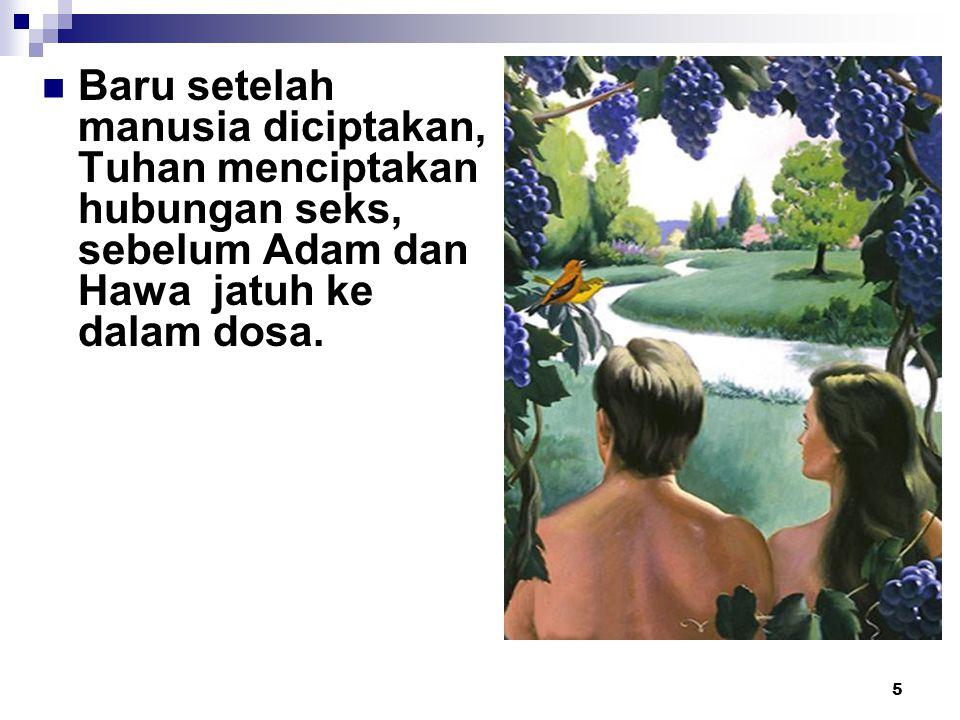 5 Baru setelah manusia diciptakan, Tuhan menciptakan hubungan seks, sebelum Adam dan Hawa jatuh ke dalam dosa.