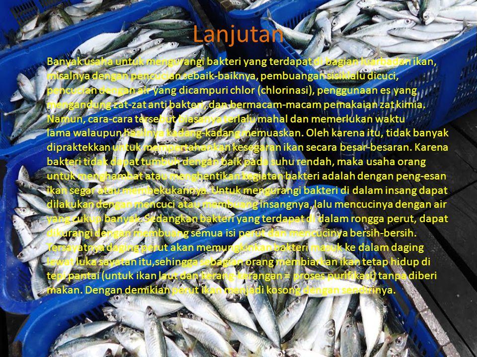 Lanjutan Banyak usaha untuk mengurangi bakteri yang terdapat di bagian luarbadan ikan, misalnya dengan pencucian sebaik-baiknya, pembuangan sisiklalu dicuci, pencucian dengan air yang dicampuri chlor (chlorinasi), penggunaan es yang mengandung zat-zat anti bakteri, dan bermacam-macam pemakaian zat kimia.