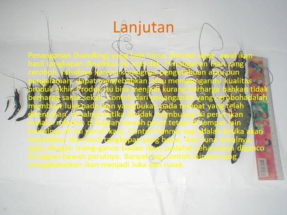 Lanjutan Penanganan (handling) yang baik harus dimulai sejak awal ikan hasil tangkapan dinaikkan ke atas dek.