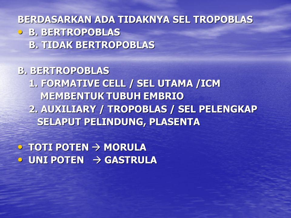 BERDASARKAN ADA TIDAKNYA SEL TROPOBLAS B. BERTROPOBLAS B. BERTROPOBLAS B. TIDAK BERTROPOBLAS B. TIDAK BERTROPOBLAS B. BERTROPOBLAS 1. FORMATIVE CELL /