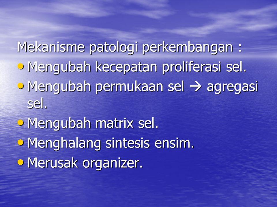 Mekanisme patologi perkembangan : Mengubah kecepatan proliferasi sel. Mengubah kecepatan proliferasi sel. Mengubah permukaan sel  agregasi sel. Mengu
