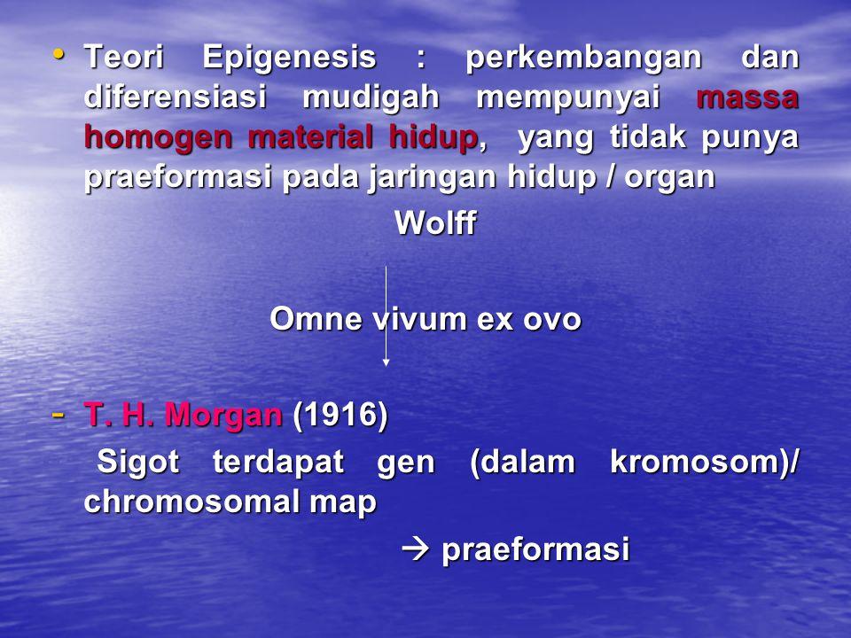 Teori Epigenesis : perkembangan dan diferensiasi mudigah mempunyai massa homogen material hidup, yang tidak punya praeformasi pada jaringan hidup / or