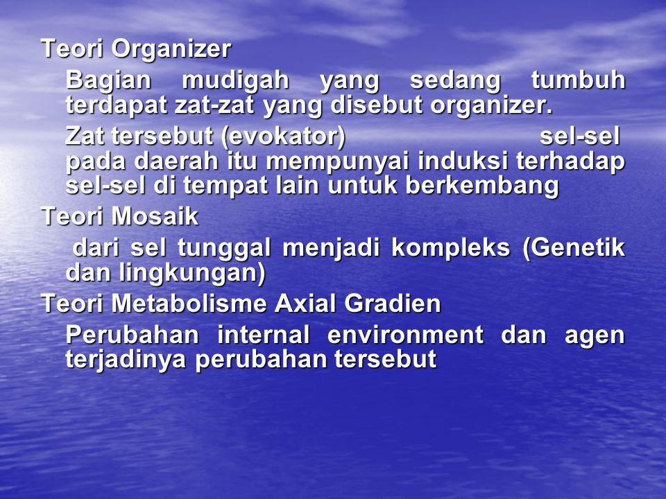 Teori Organizer Bagian mudigah yang sedang tumbuh terdapat zat-zat yang disebut organizer. Zat tersebut (evokator) sel-sel pada daerah itu mempunyai i