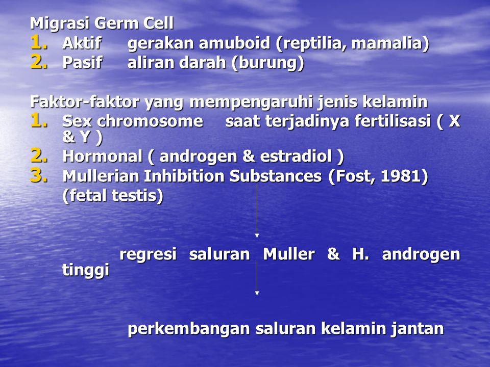Migrasi Germ Cell 1. Aktifgerakan amuboid (reptilia, mamalia) 2. Pasifaliran darah (burung) Faktor-faktor yang mempengaruhi jenis kelamin 1. Sex chrom