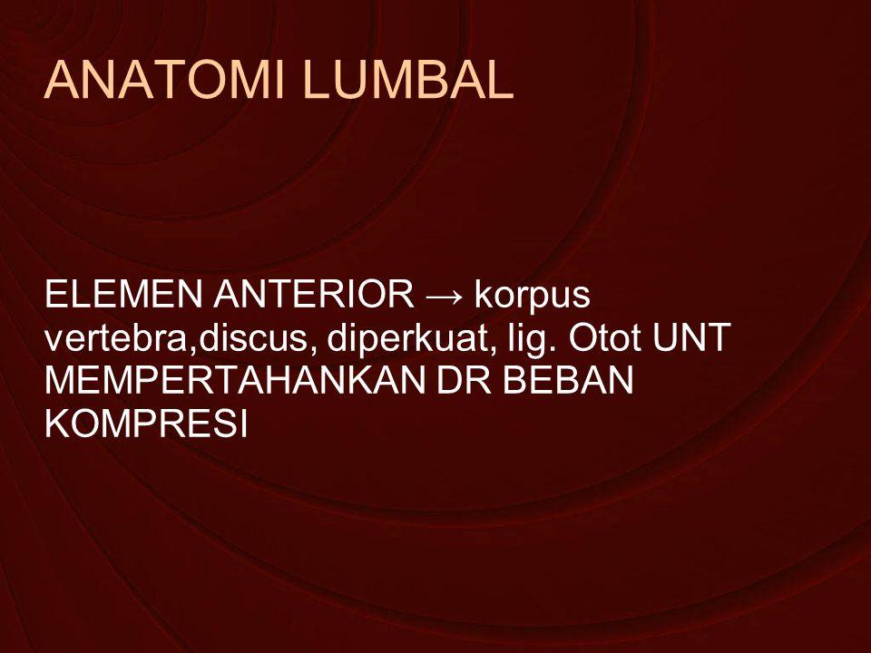 ANATOMI LUMBAL ELEMEN ANTERIOR → korpus vertebra,discus, diperkuat, lig.