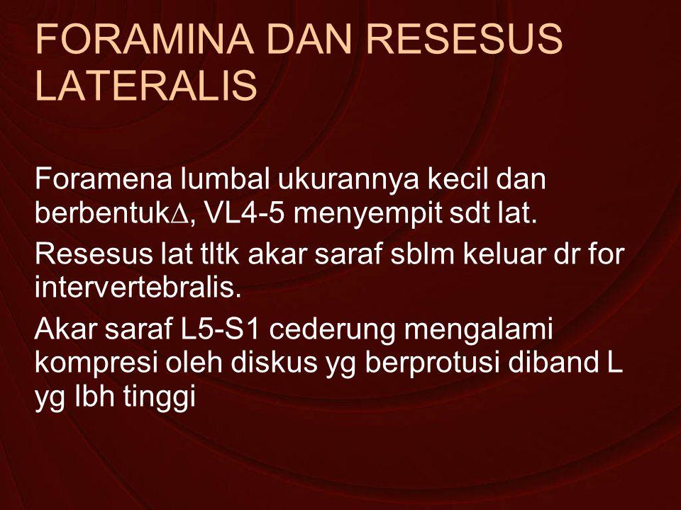 FORAMINA DAN RESESUS LATERALIS Foramena lumbal ukurannya kecil dan berbentuk∆, VL4-5 menyempit sdt lat.