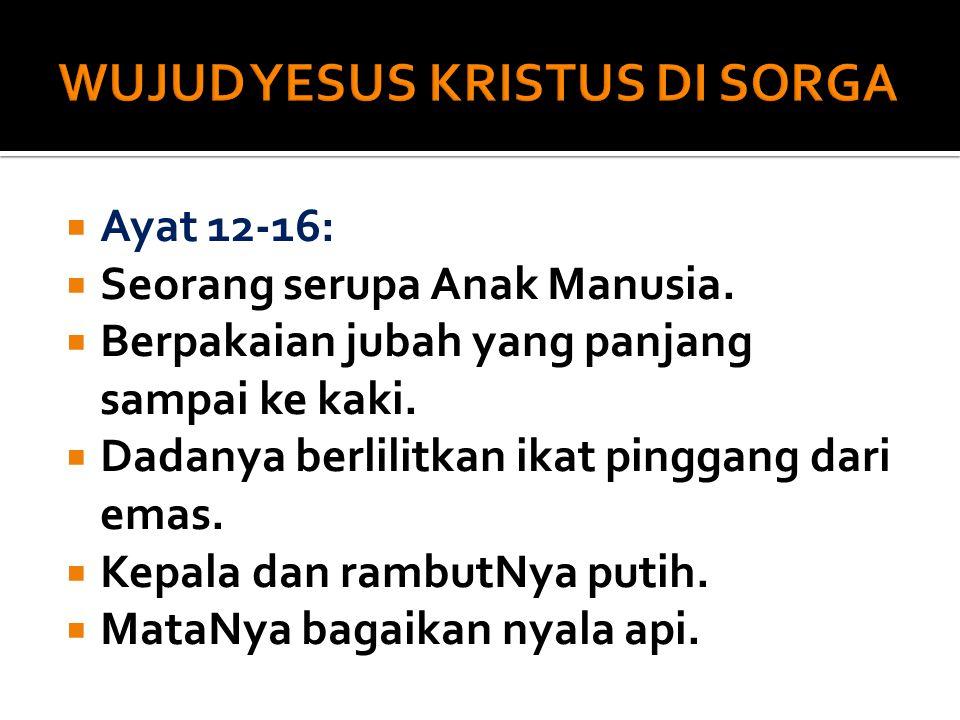  Ayat 12-16:  Seorang serupa Anak Manusia. Berpakaian jubah yang panjang sampai ke kaki.