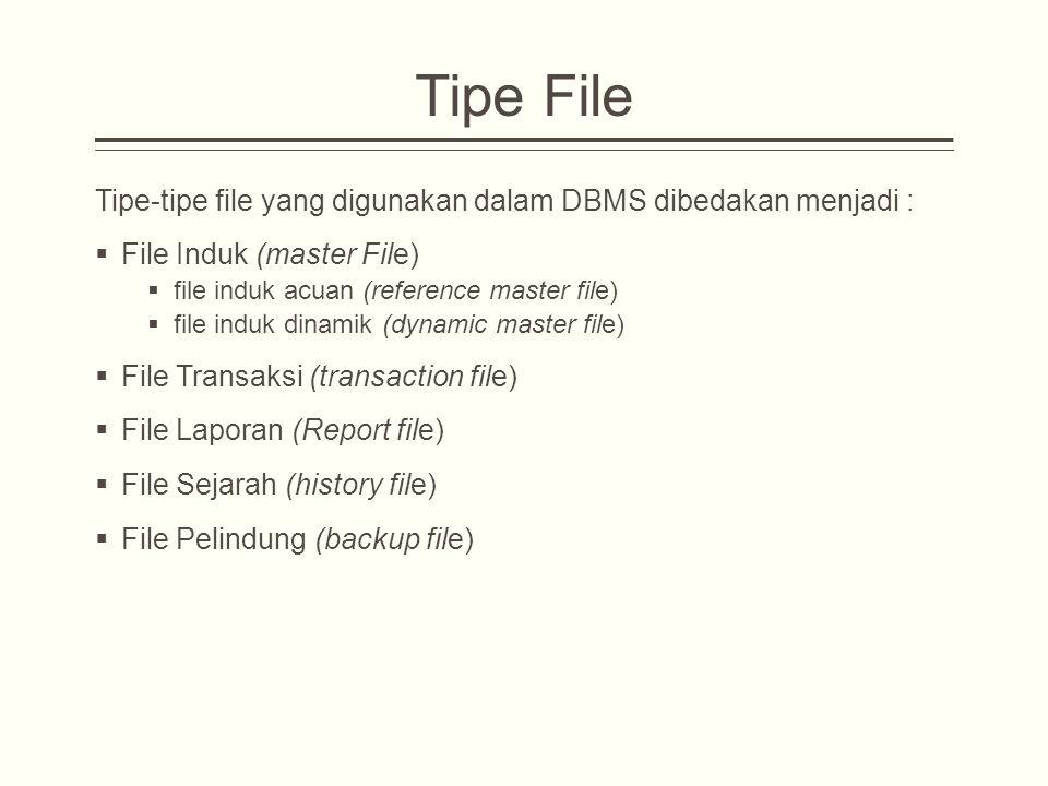 Tipe File Tipe-tipe file yang digunakan dalam DBMS dibedakan menjadi :  File Induk (master File)  file induk acuan (reference master file)  file induk dinamik (dynamic master file)  File Transaksi (transaction file)  File Laporan (Report file)  File Sejarah (history file)  File Pelindung (backup file)