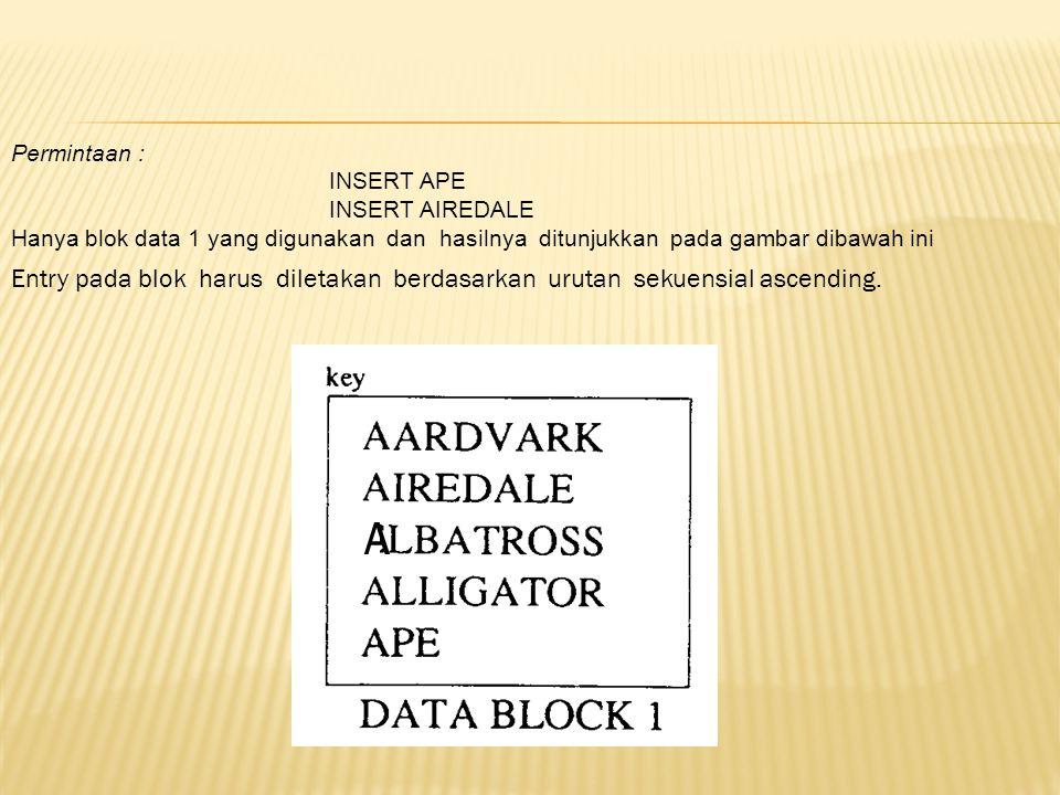 Permintaan : INSERT APE INSERT AIREDALE Hanya blok data 1 yang digunakan dan hasilnya ditunjukkan pada gambar dibawah ini Entry pada blok harus dileta