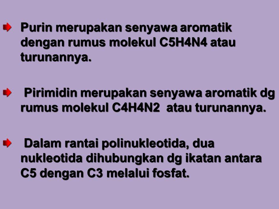 Purin merupakan senyawa aromatik dengan rumus molekul C5H4N4 atau turunannya. Pirimidin merupakan senyawa aromatik dg rumus molekul C4H4N2 atau turuna