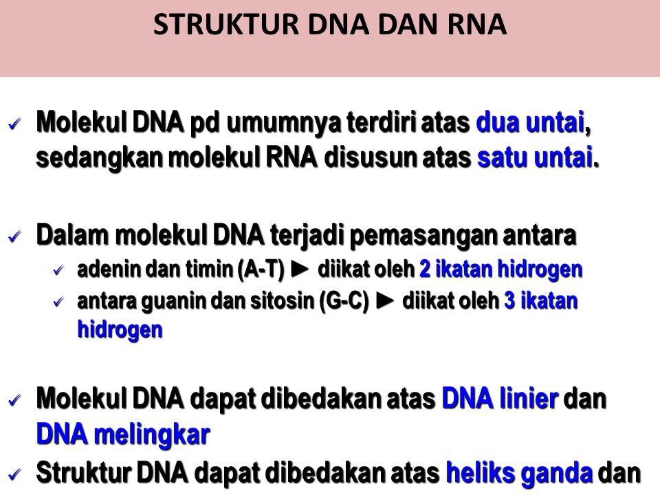 STRUKTUR DNA DAN RNA Molekul DNA pd umumnya terdiri atas dua untai, sedangkan molekul RNA disusun atas satu untai. Molekul DNA pd umumnya terdiri atas