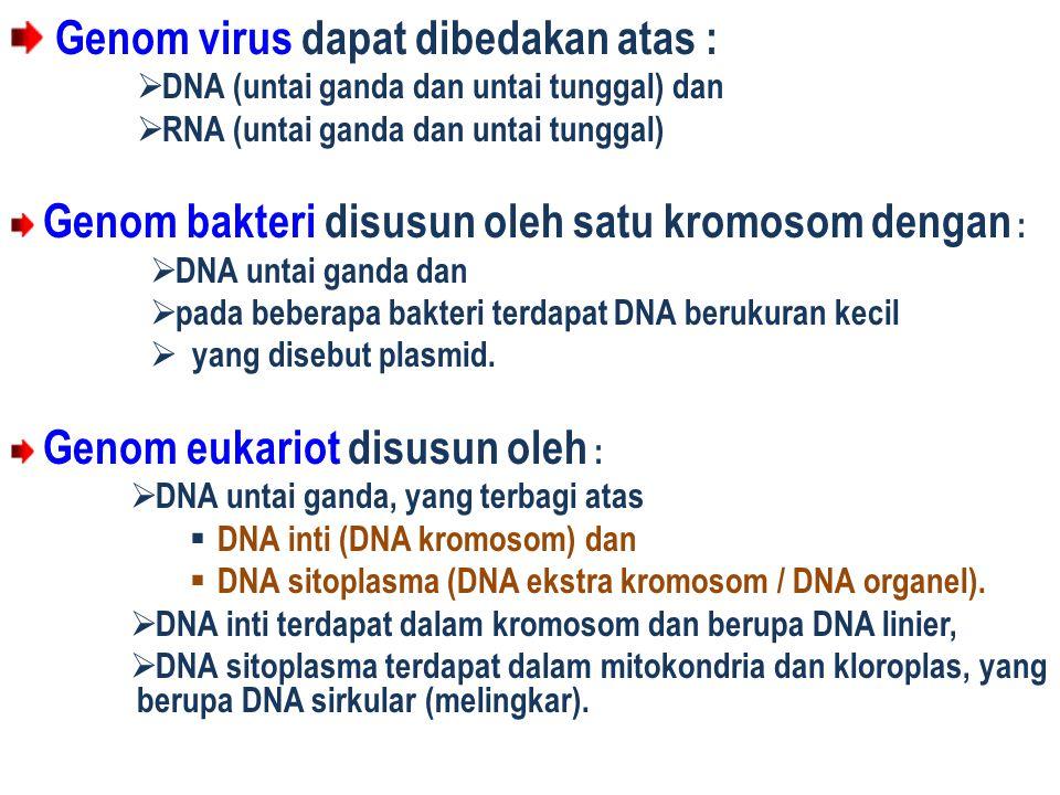 Genom virus dapat dibedakan atas :  DNA (untai ganda dan untai tunggal) dan  RNA (untai ganda dan untai tunggal) Genom bakteri disusun oleh satu kro