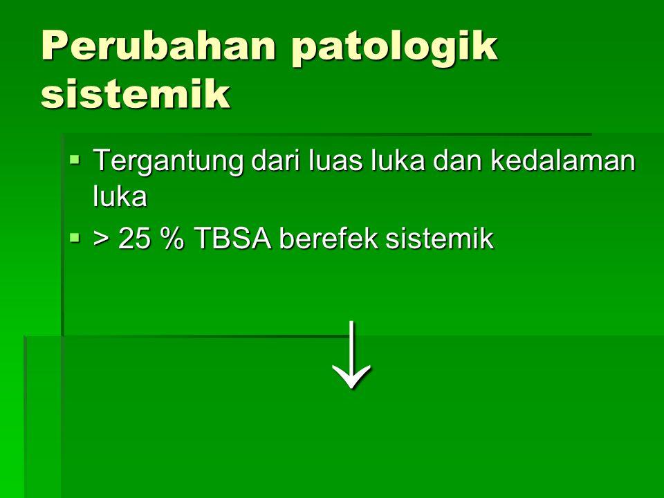 Perubahan patologik sistemik  Tergantung dari luas luka dan kedalaman luka  > 25 % TBSA berefek sistemik 