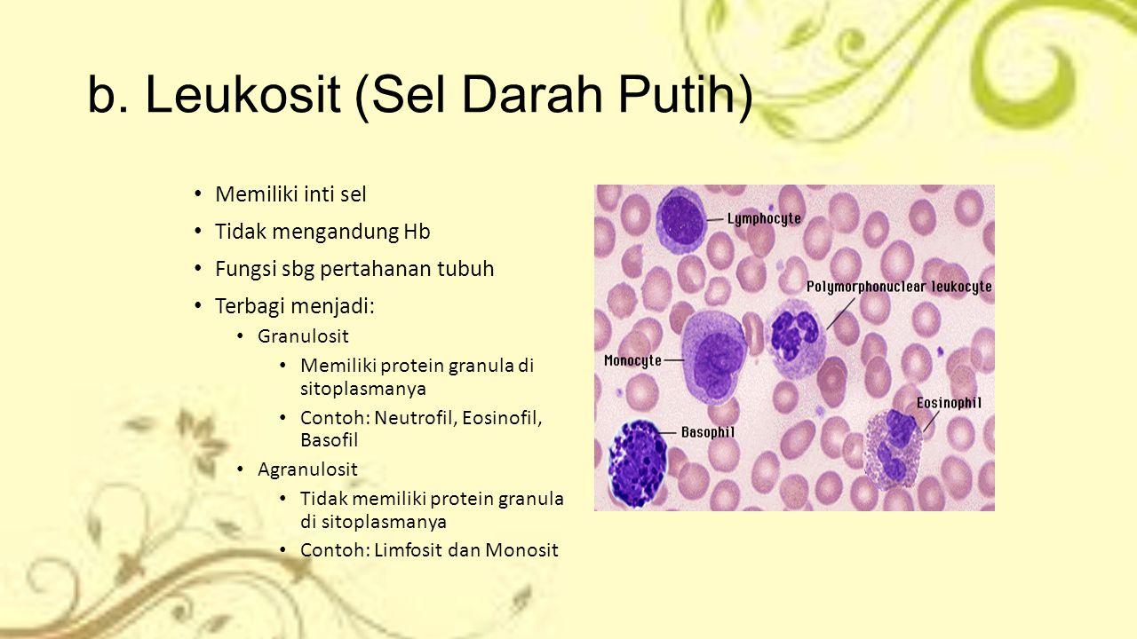 b. Leukosit (Sel Darah Putih) Memiliki inti sel Tidak mengandung Hb Fungsi sbg pertahanan tubuh Terbagi menjadi: Granulosit Memiliki protein granula d