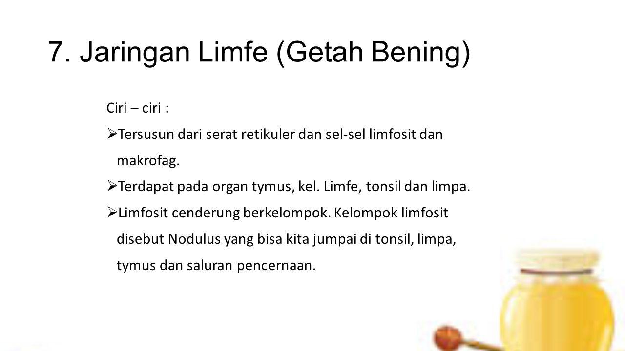 7. Jaringan Limfe (Getah Bening) Ciri – ciri :  Tersusun dari serat retikuler dan sel-sel limfosit dan makrofag.  Terdapat pada organ tymus, kel. Li