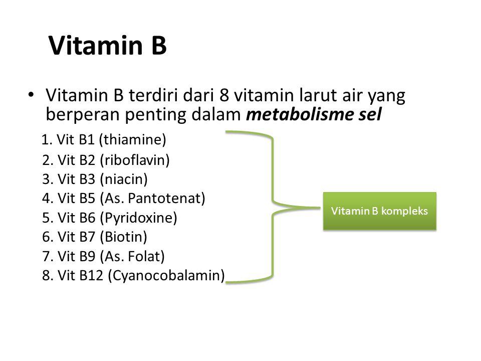 Vitamin B Vitamin B terdiri dari 8 vitamin larut air yang berperan penting dalam metabolisme sel 1. Vit B1 (thiamine) 2. Vit B2 (riboflavin) 3. Vit B3