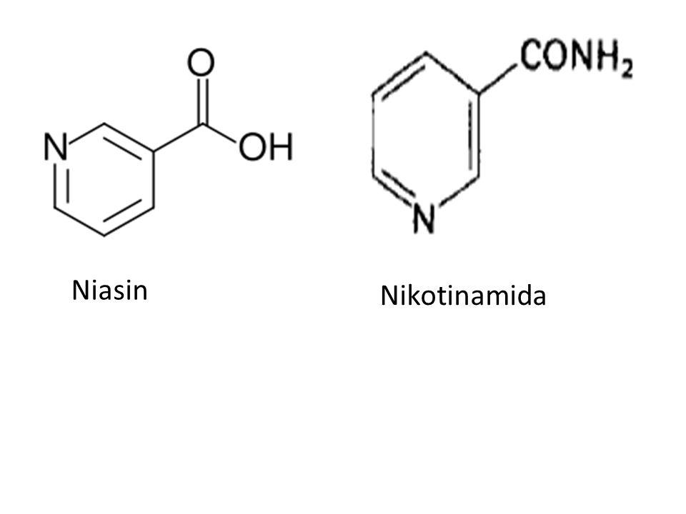 Nikotinamida Niasin