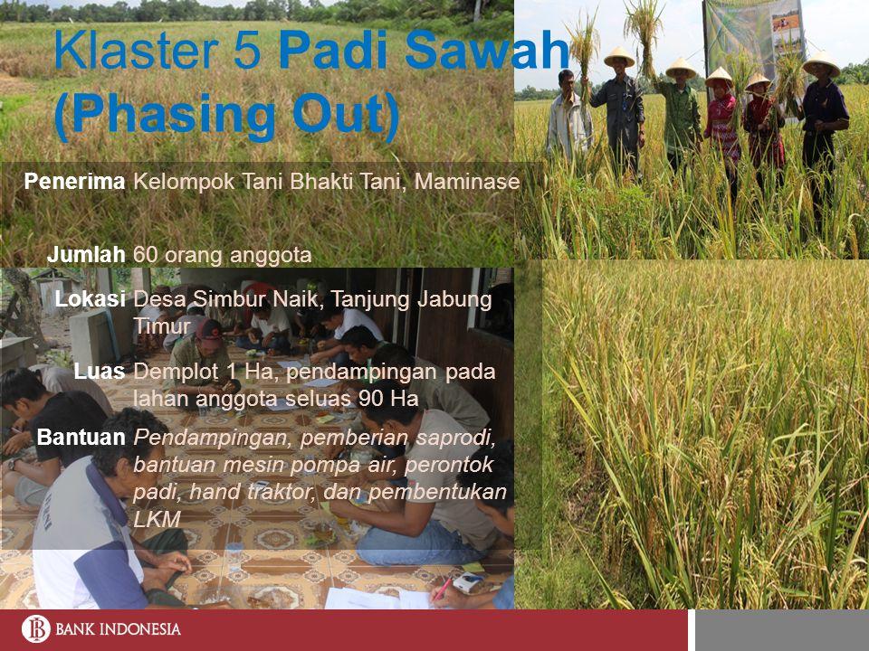 Klaster 5 Padi Sawah (Phasing Out) PenerimaKelompok Tani Bhakti Tani, Maminase Jumlah60 orang anggota LokasiDesa Simbur Naik, Tanjung Jabung Timur Lua