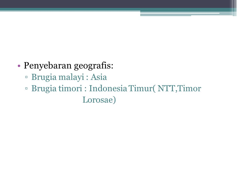 Penyebaran geografis: ▫Brugia malayi : Asia ▫Brugia timori : Indonesia Timur( NTT,Timor Lorosae)