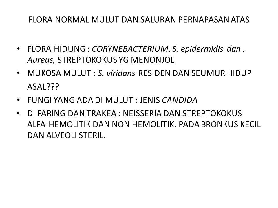 FLORA NORMAL MULUT DAN SALURAN PERNAPASAN ATAS FLORA HIDUNG : CORYNEBACTERIUM, S. epidermidis dan. Aureus, STREPTOKOKUS YG MENONJOL MUKOSA MULUT : S.