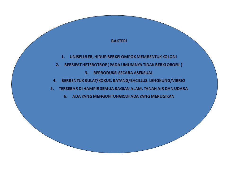 BAKTERI 1.UNISELULER, HIDUP BERKELOMPOK MEMBENTUK KOLONI 2.BERSIFAT HETEROTROF ( PADA UMUMNYA TIDAK BERKLOROFIL ) 3.REPRODUKSI SECARA ASEKSUAL 4.BERBE