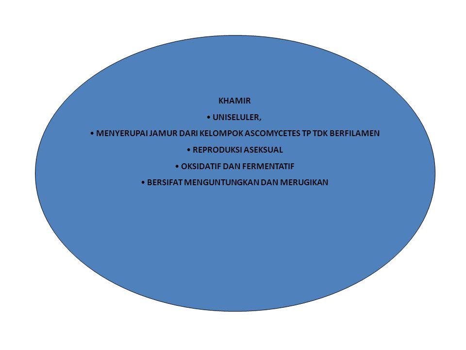 JAMUR / FUNGI MULTISELULER KENAMPAKAN SEPERTI BELUDRU/VELVET, BUBUK / POWDER, BASAH ATAU SEPERTI GELATIN BERSIFAT MENGUNTUNGKAN DAN MERUGIKAN