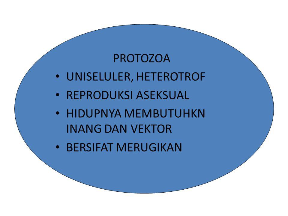 MIKROORGANISME PATOGEN MIKROORGANISME PATOGEN DARI GOLONGAN BAKTERI BAKTERI BATANG ( BACILUS ) ADA 2 CONTOH YAITU : A.Bacilus antraxis