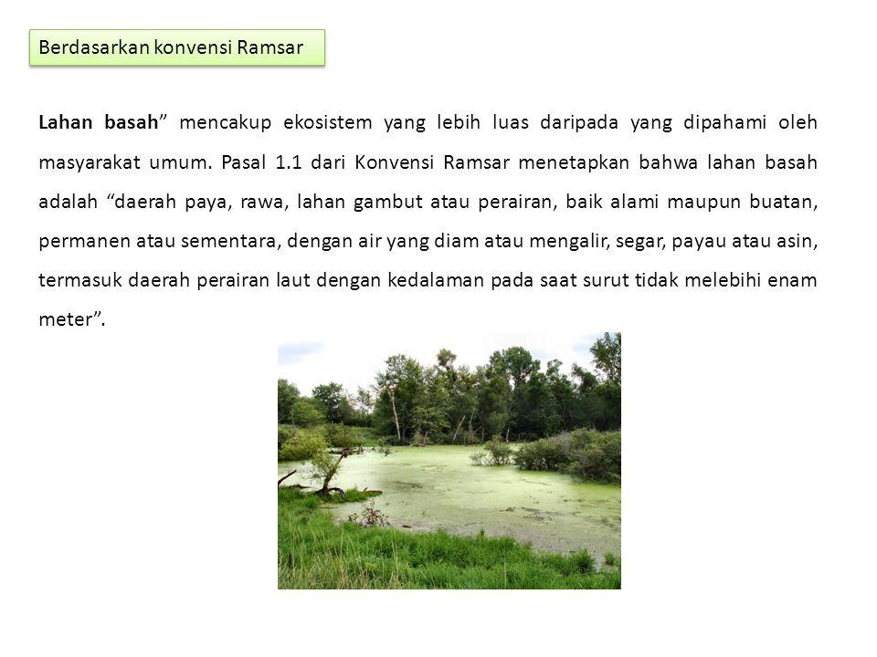"""Berdasarkan konvensi Ramsar Lahan basah"""" mencakup ekosistem yang lebih luas daripada yang dipahami oleh masyarakat umum. Pasal 1.1 dari Konvensi Ramsa"""