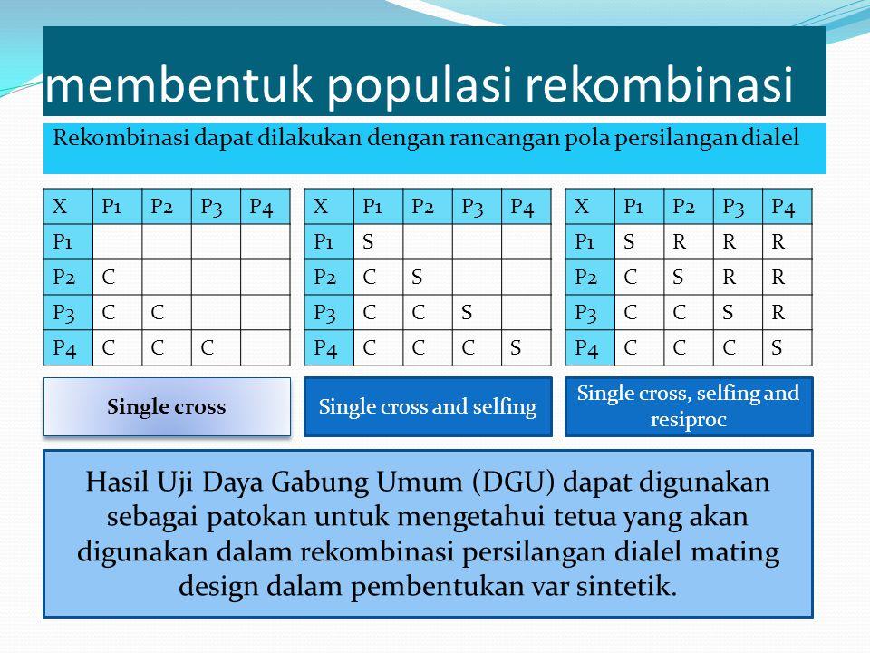 membentuk populasi rekombinasi Rekombinasi dapat dilakukan dengan rancangan pola persilangan dialel XP1P2P3P4 P1 P2C P3CC P4CCC XP1P2P3P4 P1S P2CS P3C