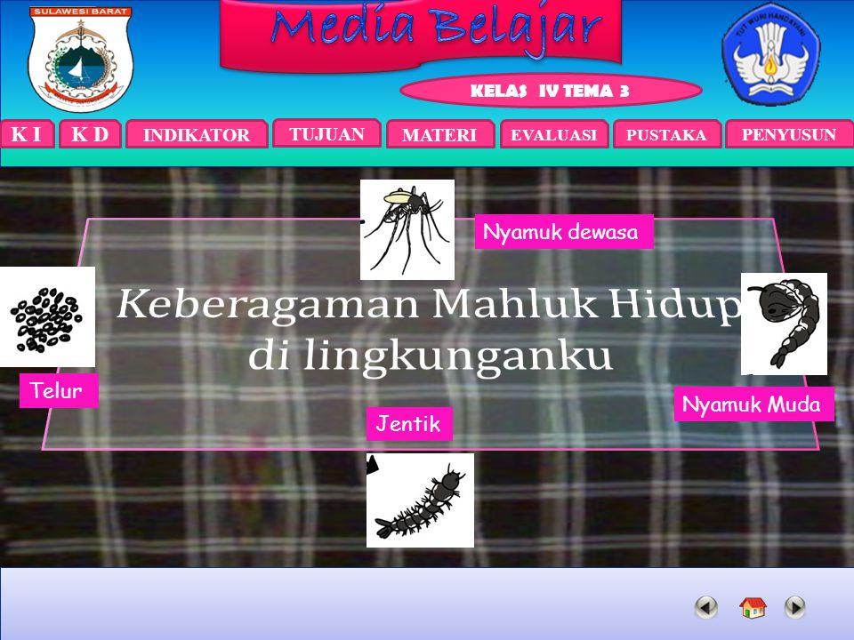K I INDIKATOR TUJUAN EVALUASIPUSTAKA KELAS IV TEMA 3 PENYUSUN MATERI K D Nyamuk dewasa Nyamuk Muda Jentik Telur