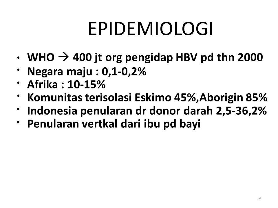 EPIDEMIOLOGI WHO  400 jt org pengidap HBV pd thn 2000 Negara maju : 0,1-0,2% Afrika : 10-15% Komunitas terisolasi Eskimo 45%,Aborigin 85% Indonesia penularan dr donor darah 2,5-36,2% Penularan vertkal dari ibu pd bayi 3