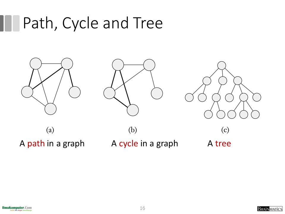 Path, Cycle and Tree 16 A path in a graph A cycle in a graph A tree