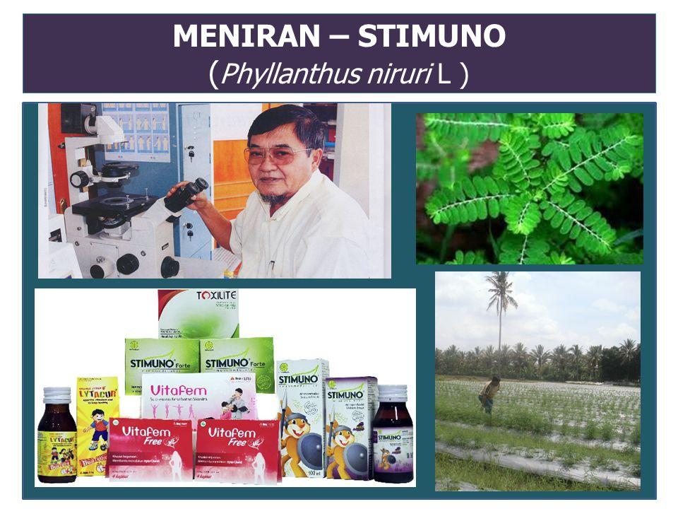 MENIRAN – STIMUNO ( Phyllanthus niruri L )