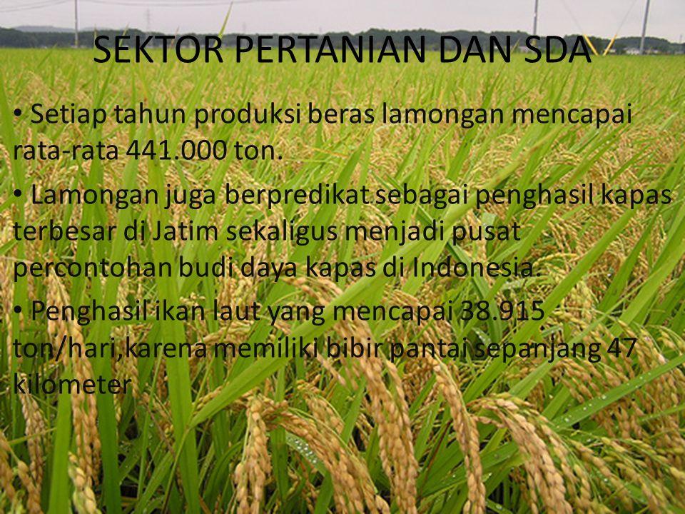 SEKTOR PERTANIAN DAN SDA Setiap tahun produksi beras lamongan mencapai rata-rata 441.000 ton. Lamongan juga berpredikat sebagai penghasil kapas terbes