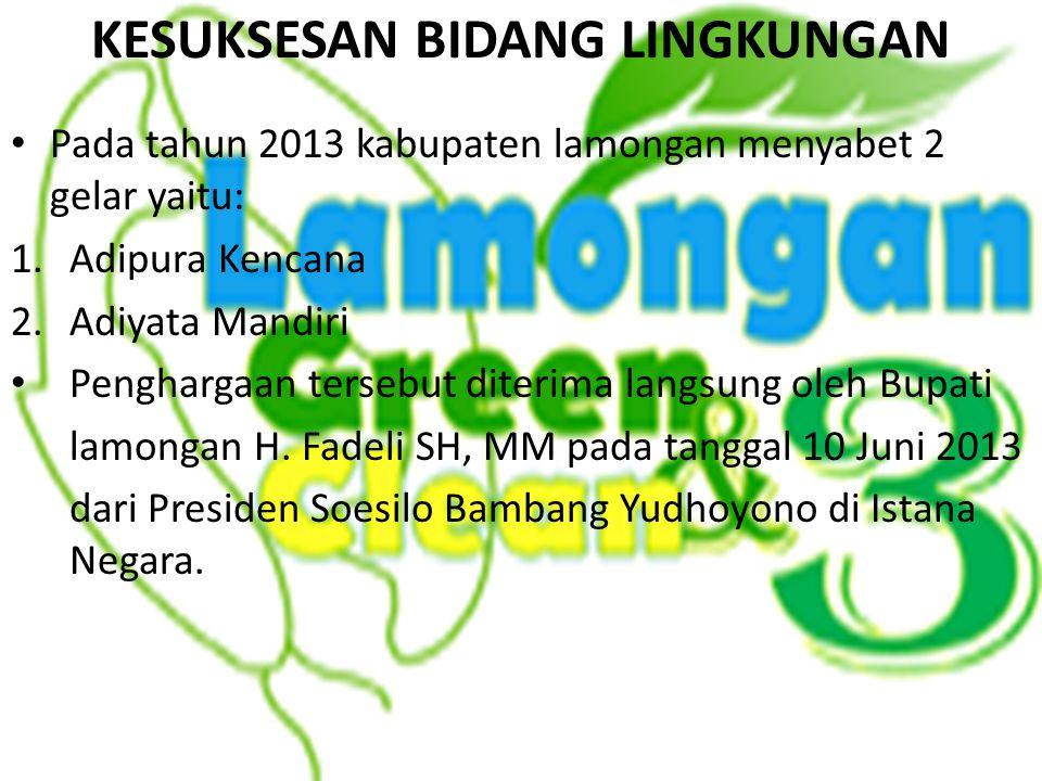 Pada tahun 2013 kabupaten lamongan menyabet 2 gelar yaitu: 1.Adipura Kencana 2.Adiyata Mandiri Penghargaan tersebut diterima langsung oleh Bupati lamo