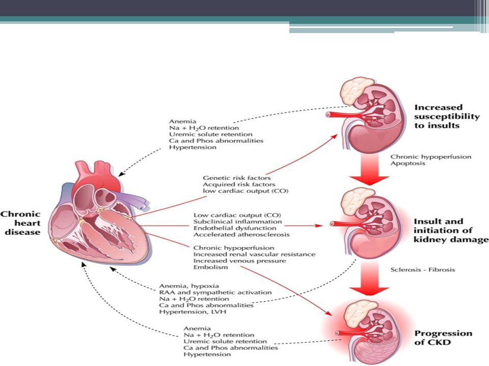 HIPERTENSI 5 Major Effects of High Blood Pressure - 3D Medical Animation - YouTube.WEBM5 Major Effects of High Blood Pressure - 3D Medical Animation - YouTube.WEBM