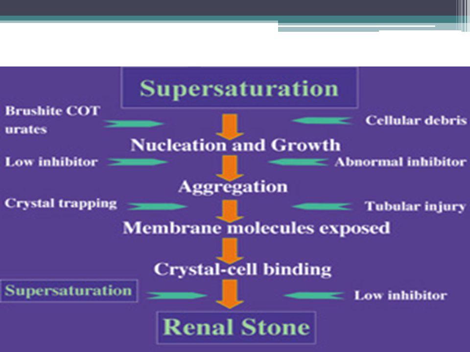 KIDNEY STONE Kidney stones animation - YouTube.WEBM
