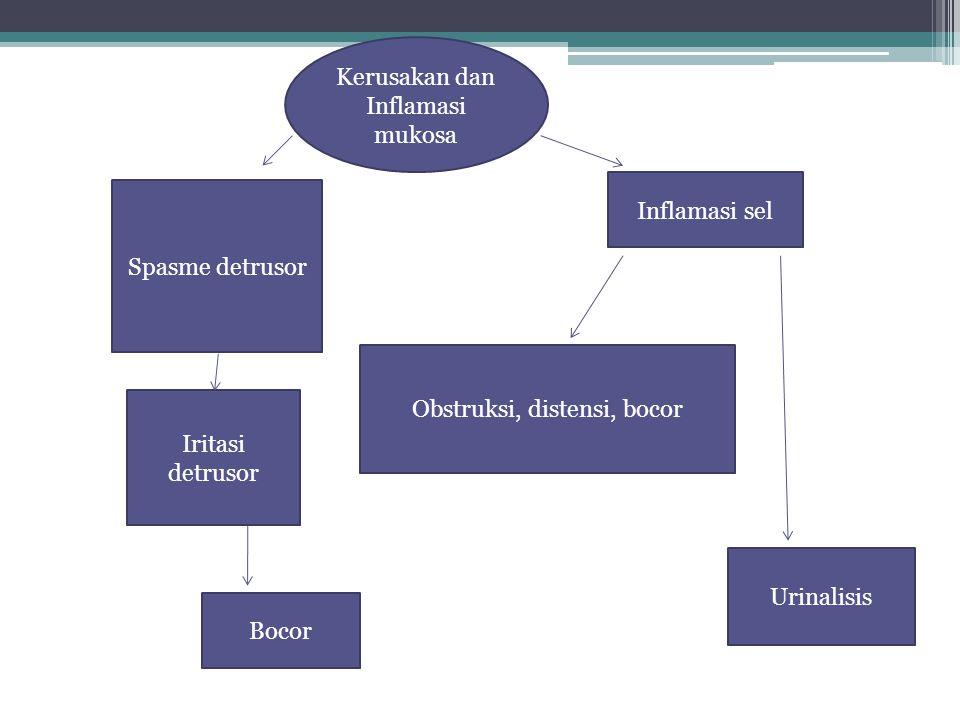 Kerusakan dan Inflamasi mukosa Iritasi detrusor Spasme detrusor Inflamasi sel Bocor Obstruksi, distensi, bocor Urinalisis