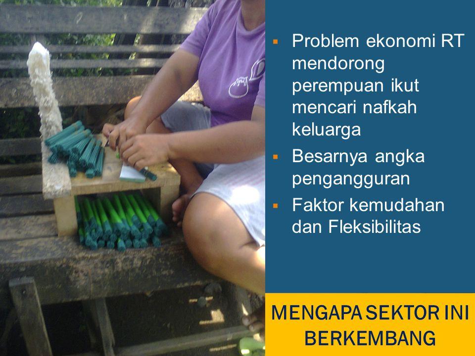 MENGAPA SEKTOR INI BERKEMBANG  Problem ekonomi RT mendorong perempuan ikut mencari nafkah keluarga  Besarnya angka pengangguran  Faktor kemudahan dan Fleksibilitas