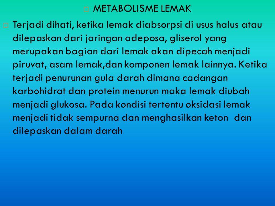  METABOLISME LEMAK  Terjadi dihati, ketika lemak diabsorpsi di usus halus atau dilepaskan dari jaringan adeposa, gliserol yang merupakan bagian dari