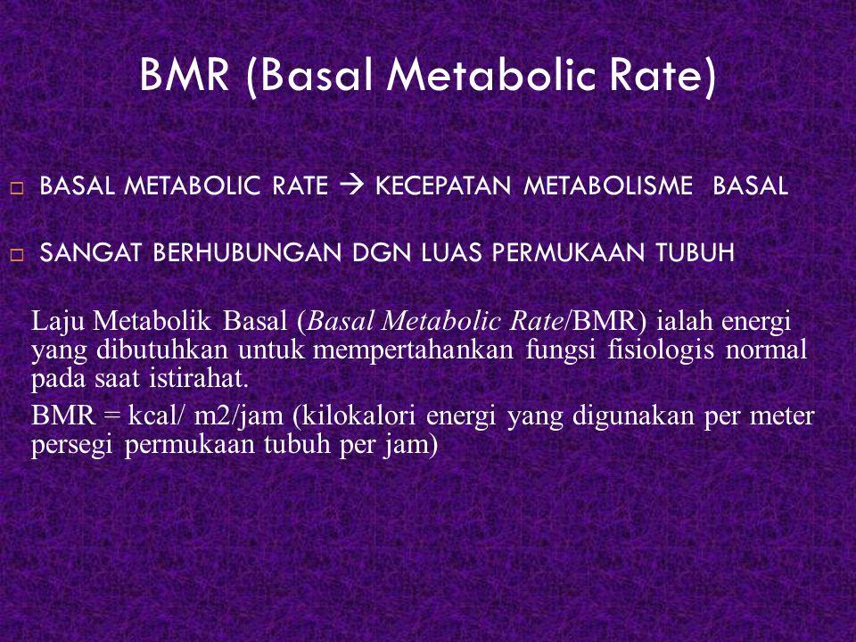 BMR (Basal Metabolic Rate)  BASAL METABOLIC RATE  KECEPATAN METABOLISME BASAL  SANGAT BERHUBUNGAN DGN LUAS PERMUKAAN TUBUH Laju Metabolik Basal (Ba