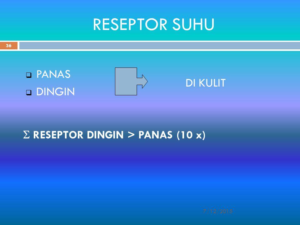 RESEPTOR SUHU  PANAS  DINGIN DI KULIT 7/12/2015 36  RESEPTOR DINGIN > PANAS (10 x)