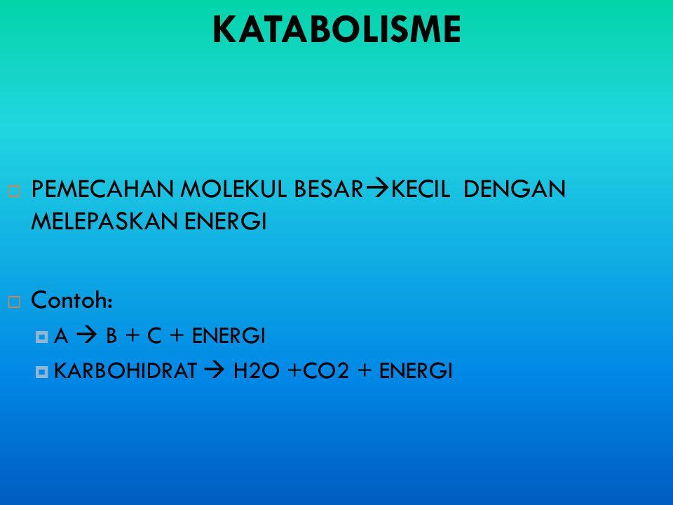 KATABOLISME  PEMECAHAN MOLEKUL BESAR  KECIL DENGAN MELEPASKAN ENERGI  Contoh:  A  B + C + ENERGI  KARBOHIDRAT  H2O +CO2 + ENERGI