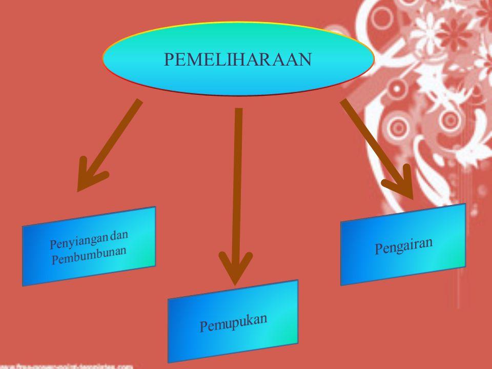 PEMELIHARAAN