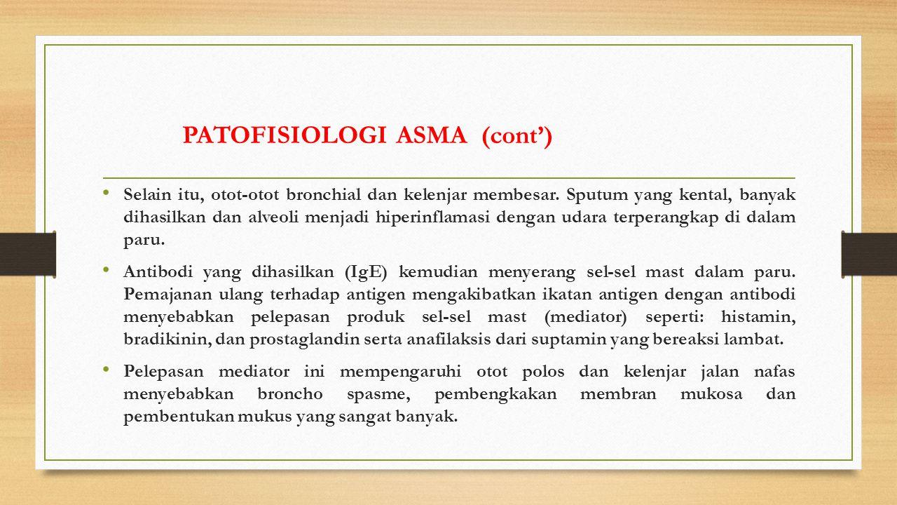 Selain itu, otot-otot bronchial dan kelenjar membesar.