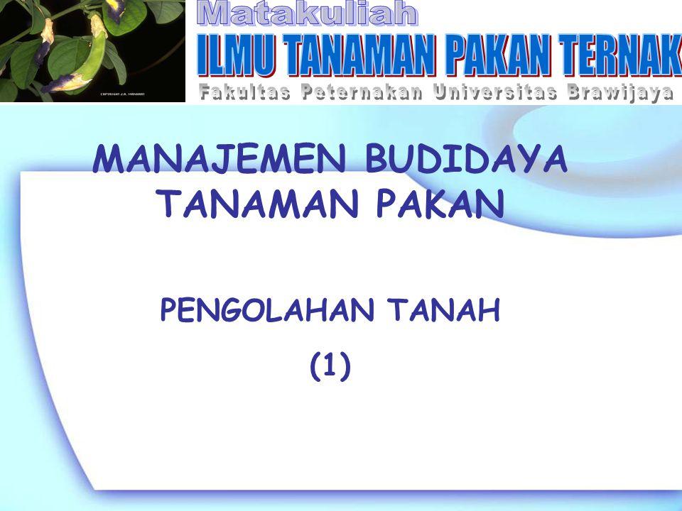 MANAJEMEN BUDIDAYA TANAMAN PAKAN PENGOLAHAN TANAH (1)