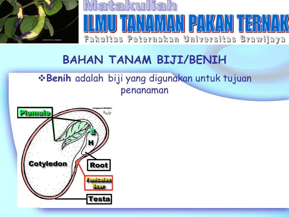 BAHAN TANAM BIJI/BENIH  Benih adalah biji yang digunakan untuk tujuan penanaman