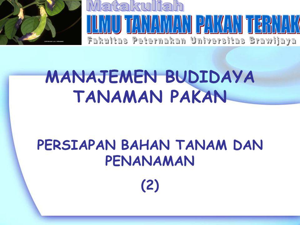 MANAJEMEN BUDIDAYA TANAMAN PAKAN PERSIAPAN BAHAN TANAM DAN PENANAMAN (2)