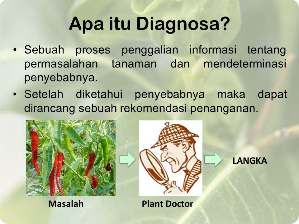 Apa itu Diagnosa? Sebuah proses penggalian informasi tentang permasalahan tanaman dan mendeterminasi penyebabnya. Setelah diketahui penyebabnya maka d